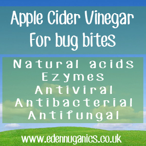 ACV and Insect Bites