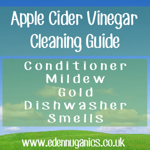 ACV Cleaning Guide