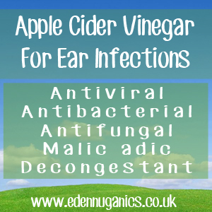 ACV Ear Infections