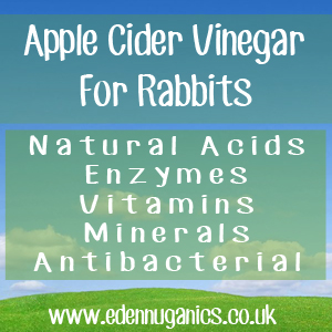 ACV Rabbit Keepers