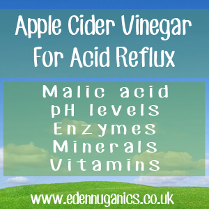 ACV Acid Reflux Remedy