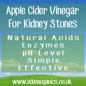 ACV Gallstones & Kidney Stones