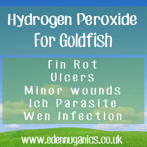 Hydroden Peroxide for your Goldfish