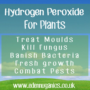 Hydroden Peroxide for Your Plants