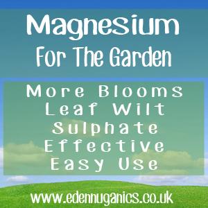 Garden Magnesium Uses